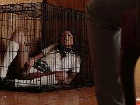 Adria Rae Naughty Little Schoolgirl Gets Bound Newsensations