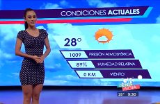 For Some Reason I've Really Been Into The Mexican Weather Channel Recently