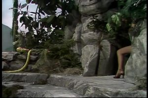 Raquel Welch Brought Some Surprising Plot To The Muppet Show